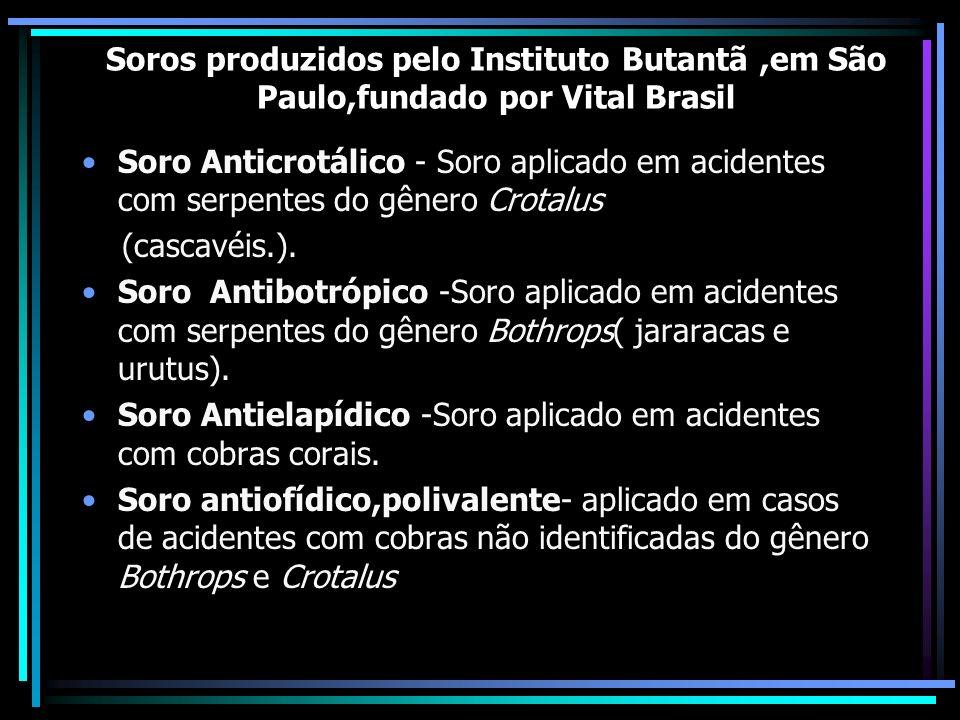 Soros produzidos pelo Instituto Butantã ,em São Paulo,fundado por Vital Brasil