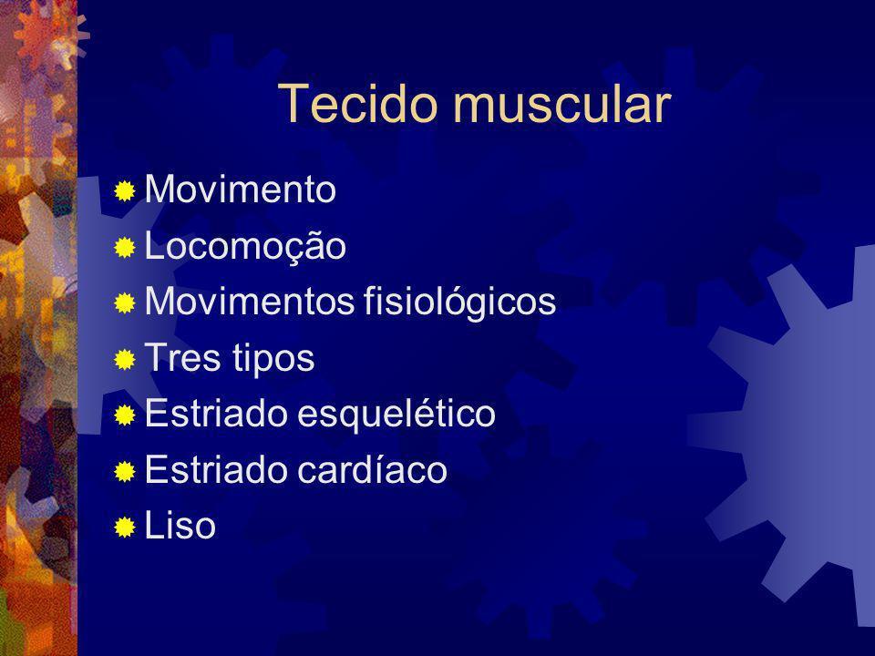 Tecido muscular Movimento Locomoção Movimentos fisiológicos Tres tipos