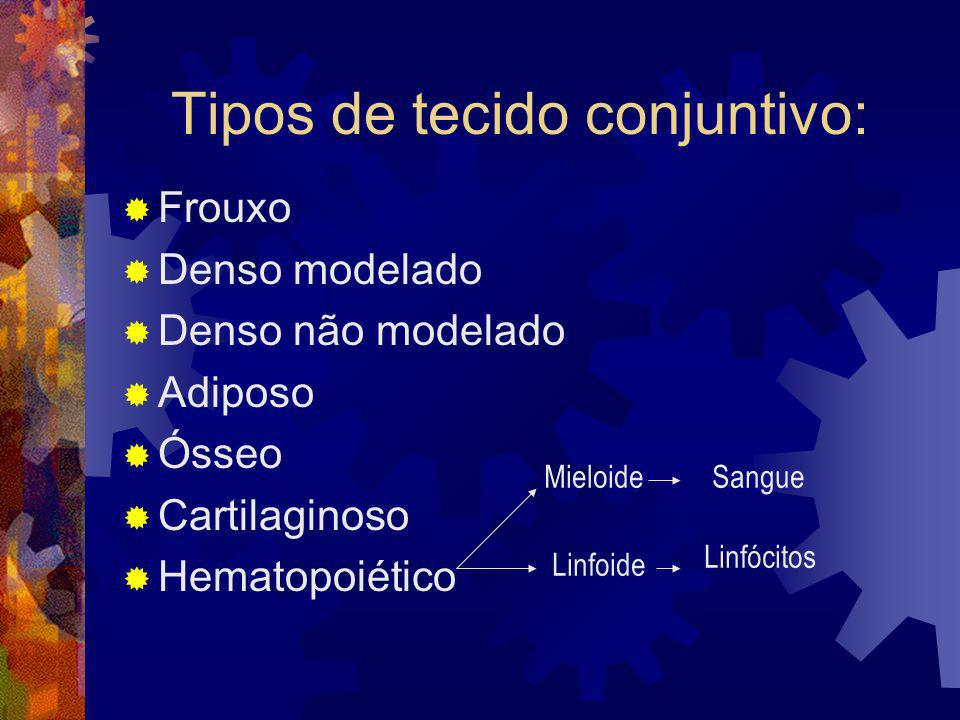 Tipos de tecido conjuntivo: