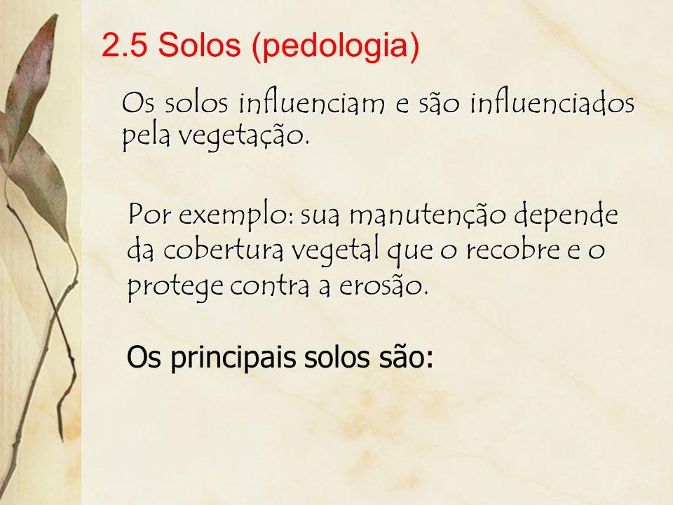 2.5 Solos (pedologia)Os solos influenciam e são influenciados pela vegetação.