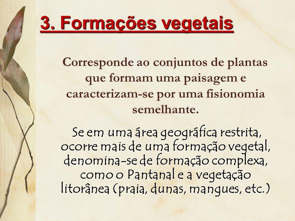3. Formações vegetais Corresponde ao conjuntos de plantas que formam uma paisagem e caracterizam-se por uma fisionomia semelhante.