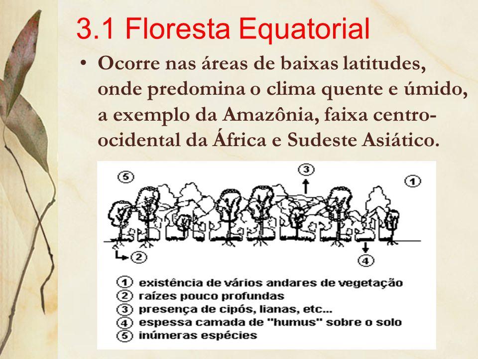 3.1 Floresta Equatorial