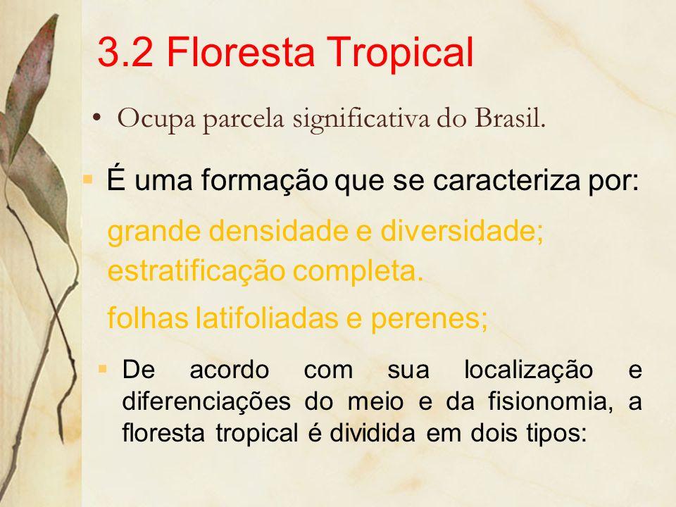 3.2 Floresta Tropical Ocupa parcela significativa do Brasil.
