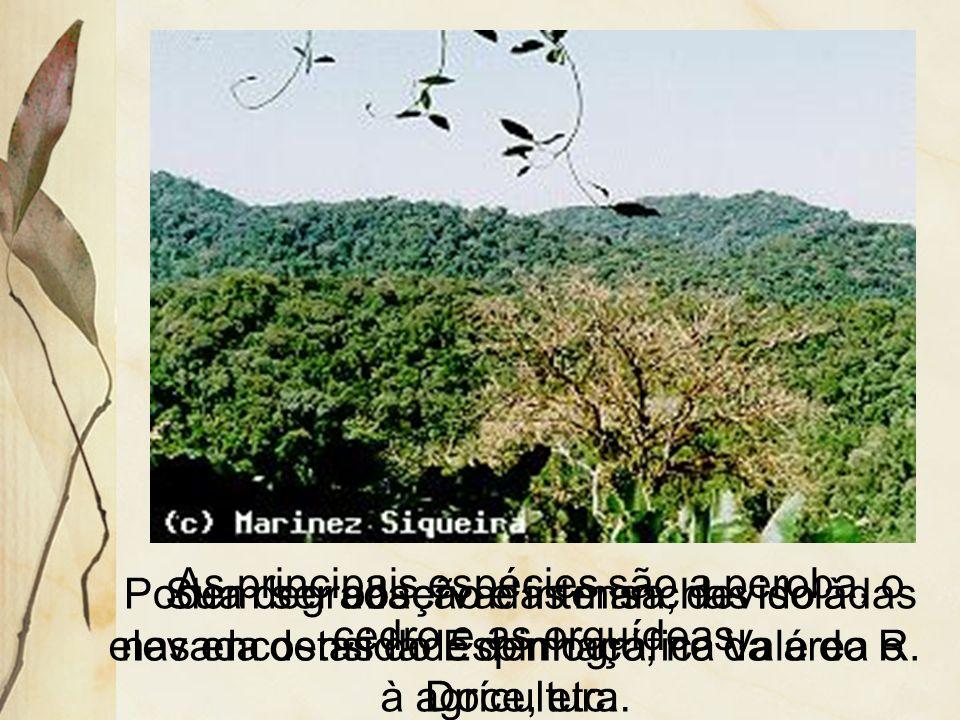 As principais espécies são a peroba, o cedro e as orquídeas.
