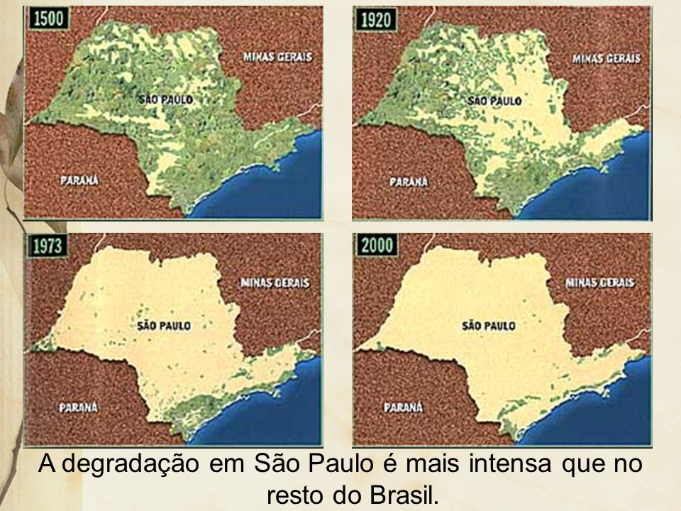 A degradação em São Paulo é mais intensa que no resto do Brasil.