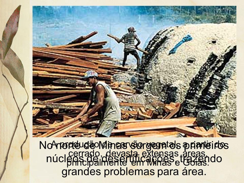 No norte de Minas surgem os primeiros núcleos de desertificações, trazendo grandes problemas para área.