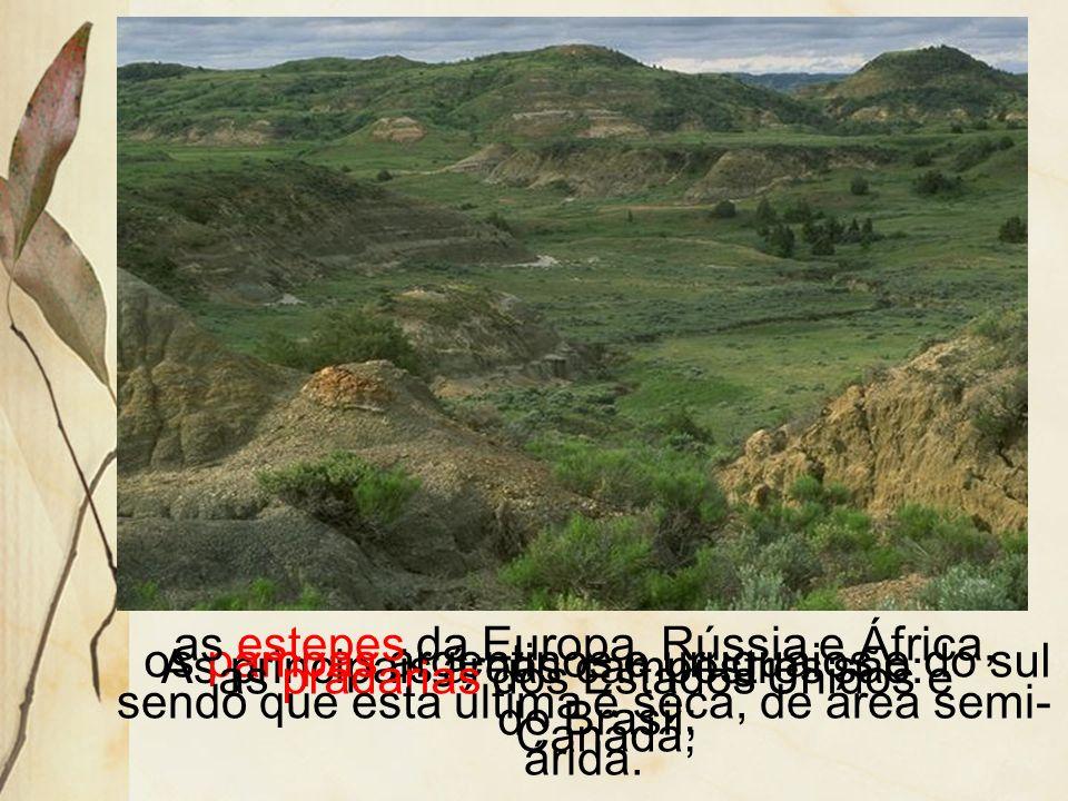 os pampas argentinos e uruguaios e do sul do Brasil;