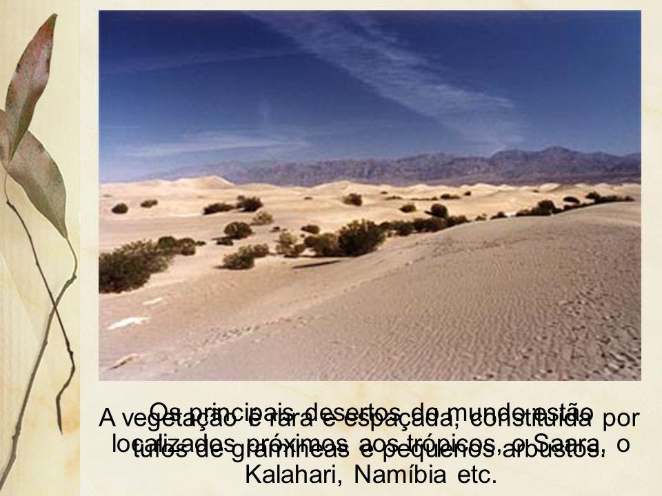 Os principais desertos do mundo estão localizados próximos aos trópicos, o Saara, o Kalahari, Namíbia etc.