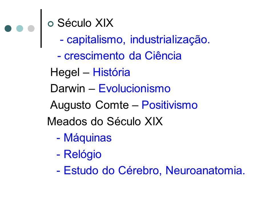 Século XIX - capitalismo, industrialização. - crescimento da Ciência. Hegel – História. Darwin – Evolucionismo.