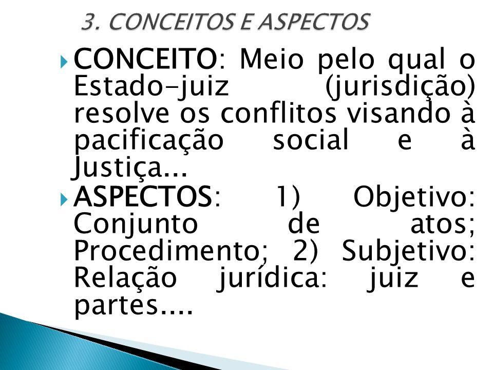 3. CONCEITOS E ASPECTOS CONCEITO: Meio pelo qual o Estado-juiz (jurisdição) resolve os conflitos visando à pacificação social e à Justiça...