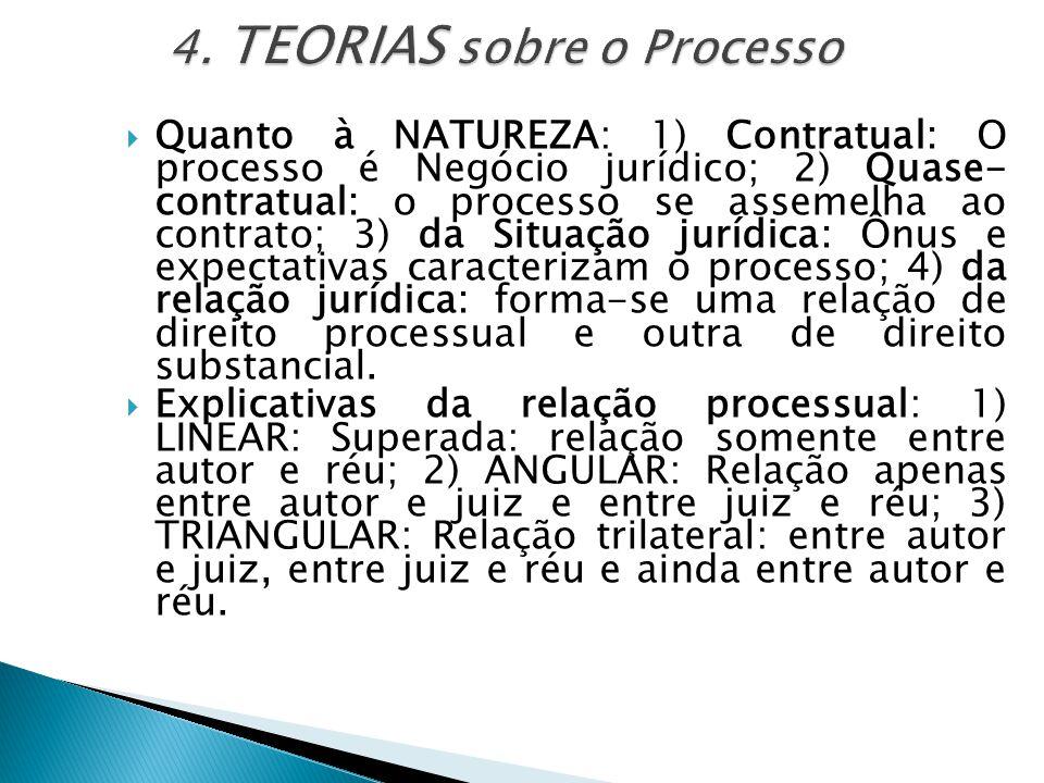 4. TEORIAS sobre o Processo