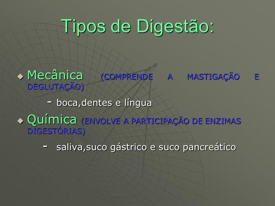 Tipos de Digestão: Mecânica (COMPRENDE A MASTIGAÇÃO E DEGLUTAÇÃO)