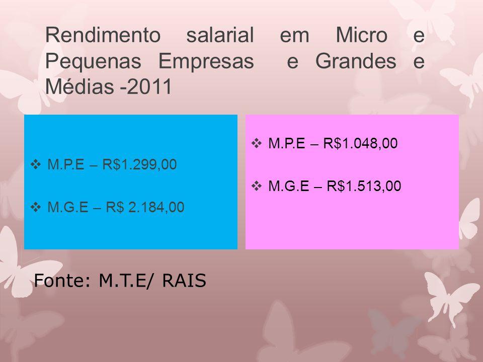 Rendimento salarial em Micro e Pequenas Empresas e Grandes e Médias -2011
