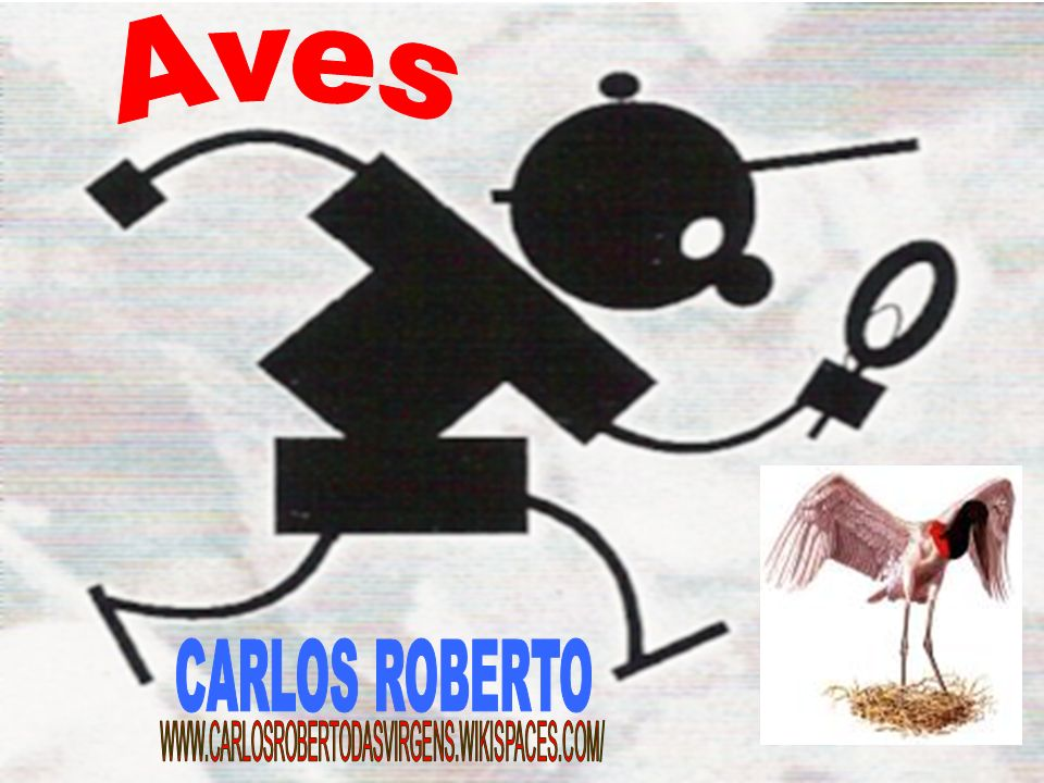 Aves CARLOS ROBERTO WWW.CARLOSROBERTODASVIRGENS.WIKISPACES.COM/