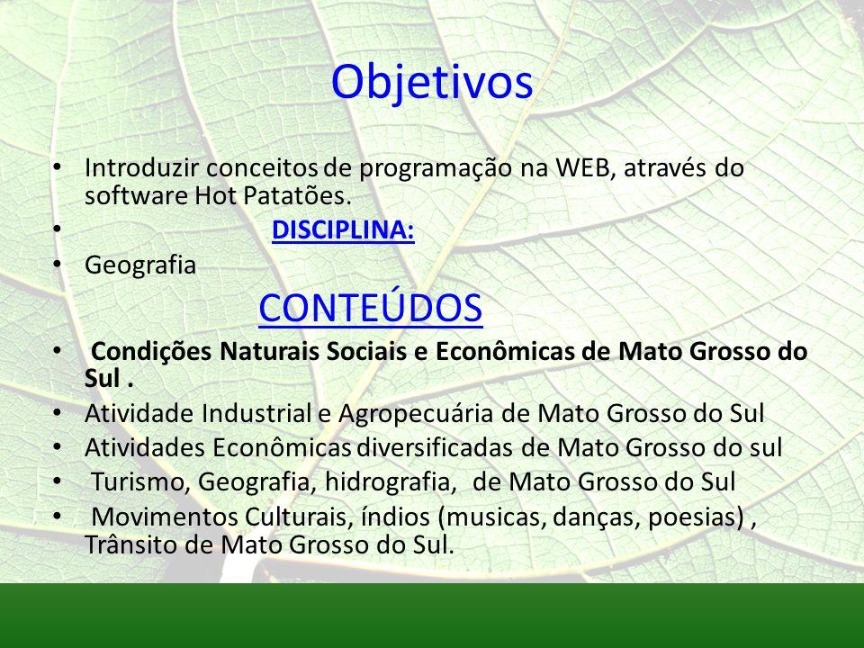 Objetivos Introduzir conceitos de programação na WEB, através do software Hot Patatões. DISCIPLINA: