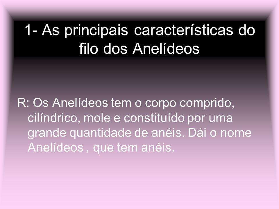 1- As principais características do filo dos Anelídeos