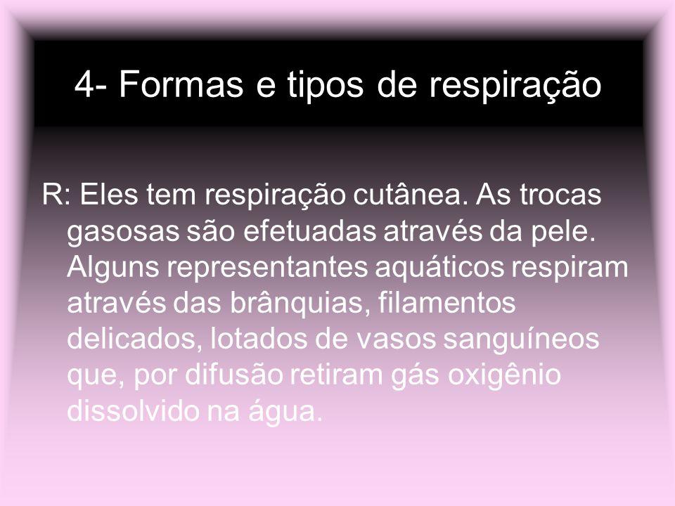 4- Formas e tipos de respiração