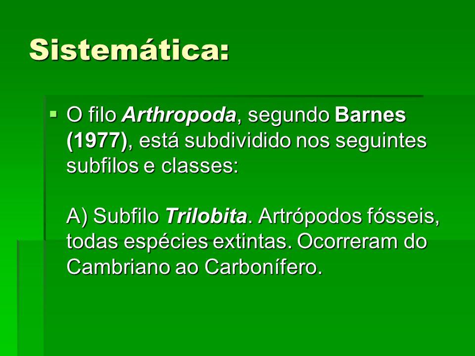 Sistemática:
