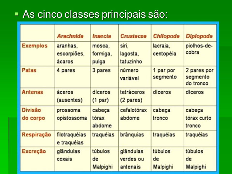As cinco classes principais são: