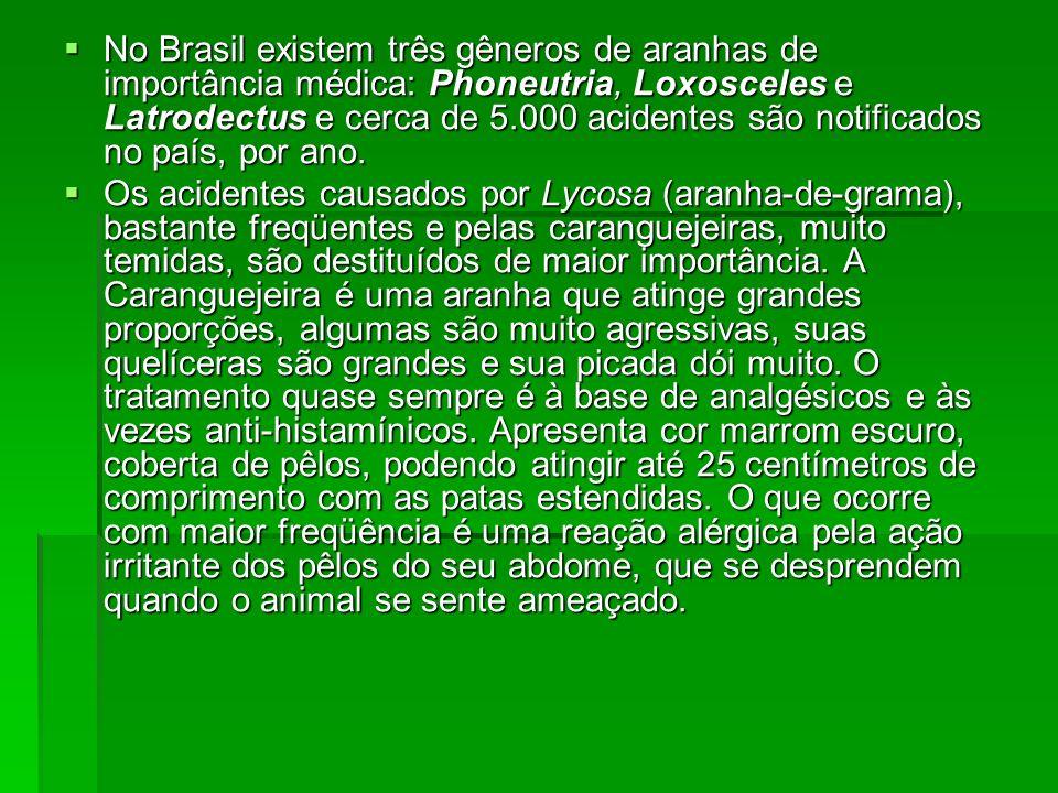 No Brasil existem três gêneros de aranhas de importância médica: Phoneutria, Loxosceles e Latrodectus e cerca de 5.000 acidentes são notificados no país, por ano.