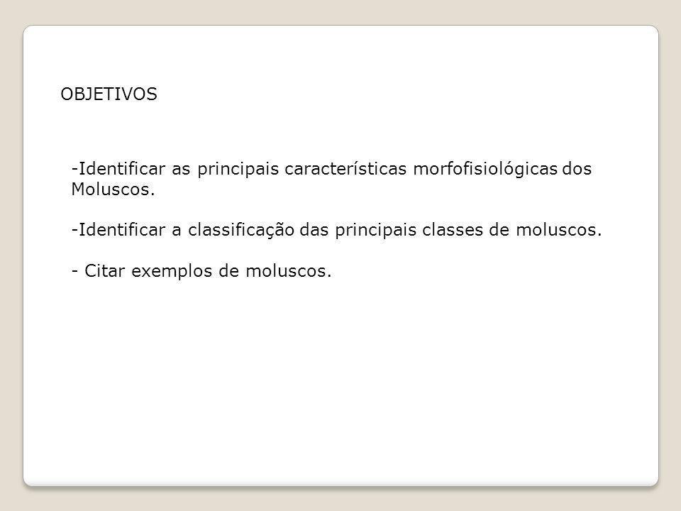 OBJETIVOSIdentificar as principais características morfofisiológicas dos. Moluscos. -Identificar a classificação das principais classes de moluscos.