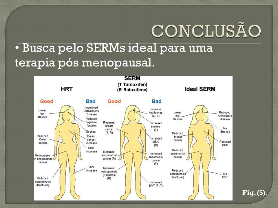 CONCLUSÃO Busca pelo SERMs ideal para uma terapia pós menopausal.
