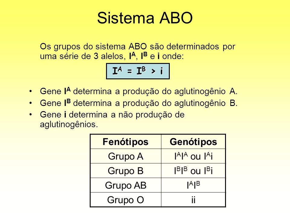 Sistema ABO IA = IB > i Fenótipos Genótipos Grupo A IAIA ou IAi
