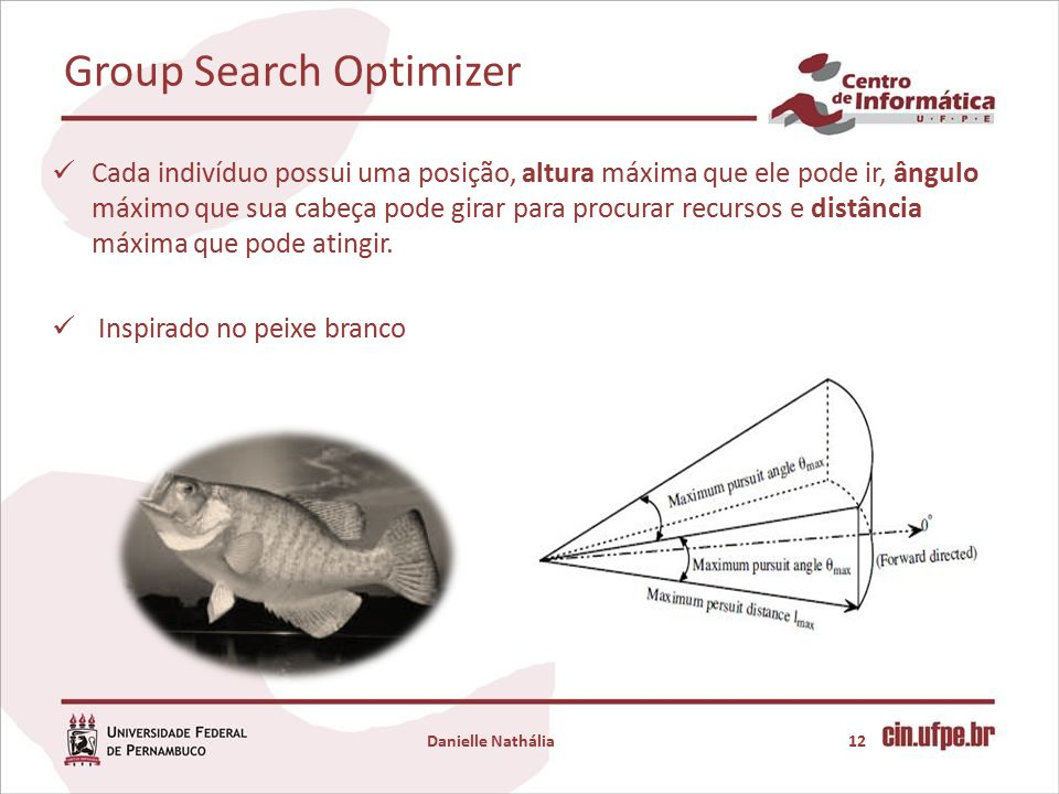 Group Search Optimizer