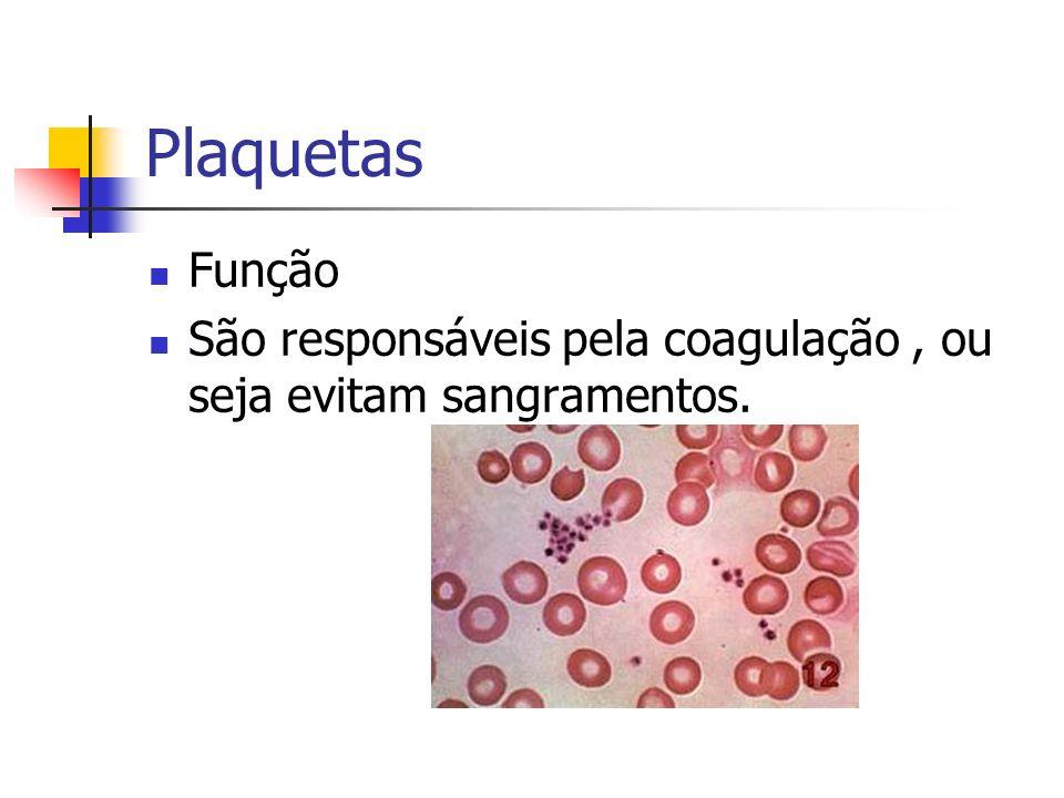 Plaquetas Função São responsáveis pela coagulação , ou seja evitam sangramentos.