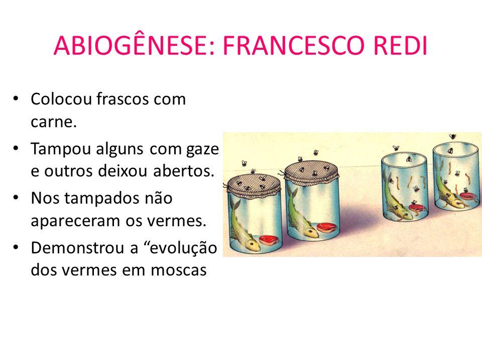 ABIOGÊNESE: FRANCESCO REDI
