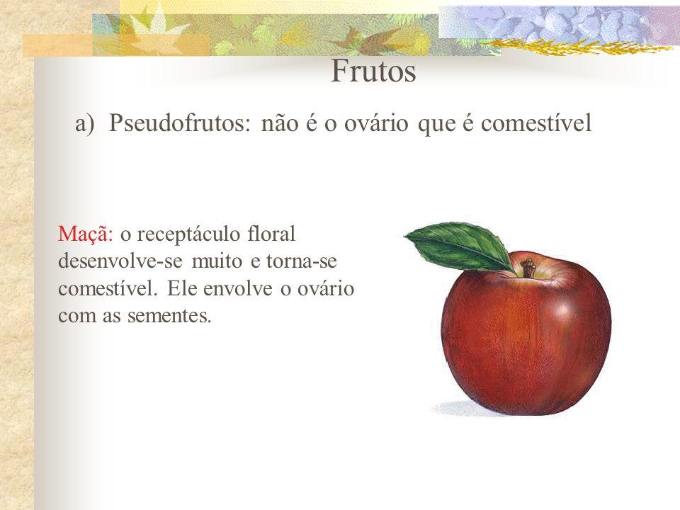 Frutos Pseudofrutos: não é o ovário que é comestível