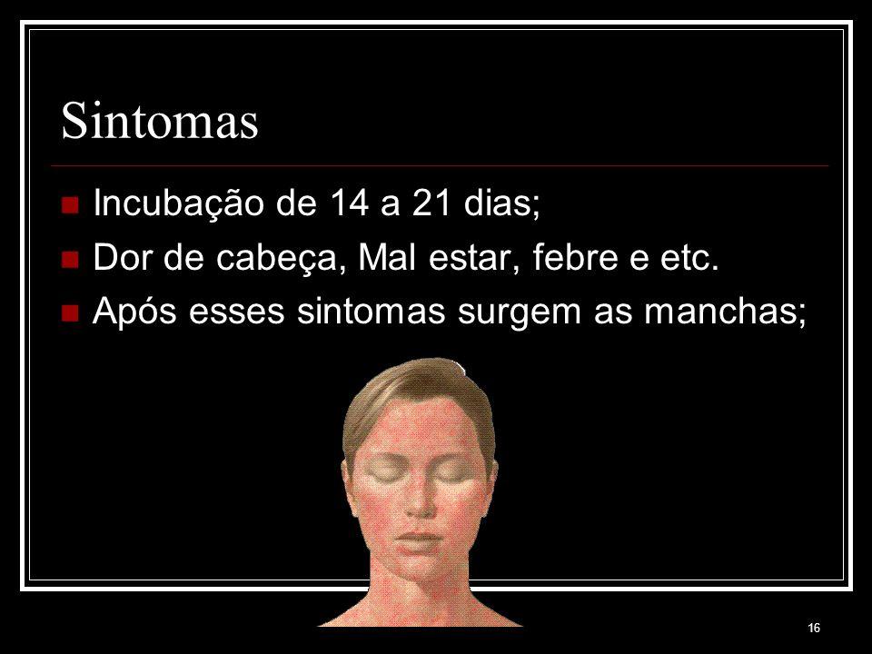 Sintomas Incubação de 14 a 21 dias;
