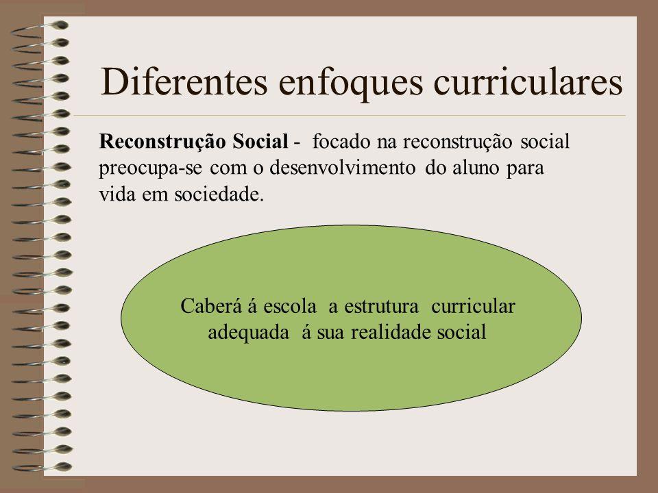Diferentes enfoques curriculares