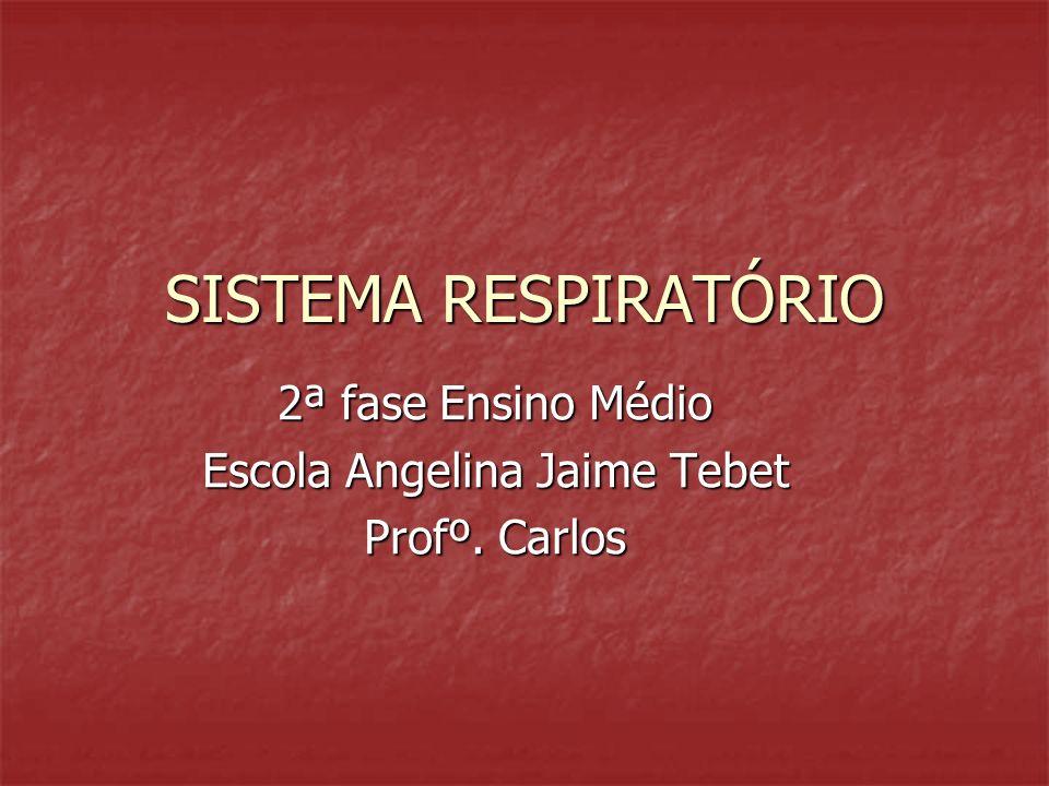 2ª fase Ensino Médio Escola Angelina Jaime Tebet Profº. Carlos