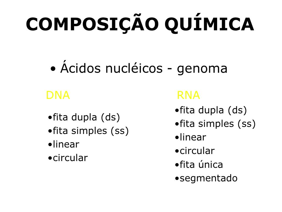 Ácidos nucléicos - genoma