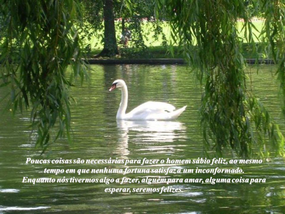 Poucas coisas são necessárias para fazer o homem sábio feliz, ao mesmo tempo em que nenhuma fortuna satisfaz a um inconformado.