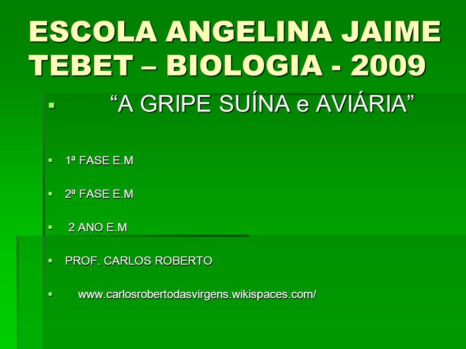ESCOLA ANGELINA JAIME TEBET – BIOLOGIA - 2009