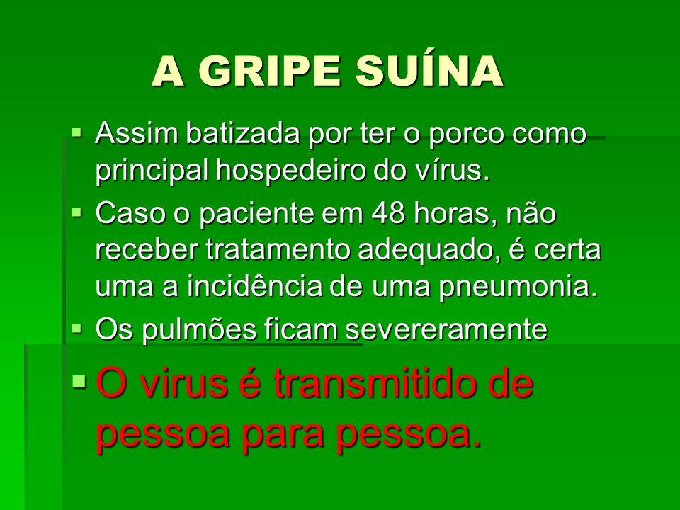 O virus é transmitido de pessoa para pessoa.
