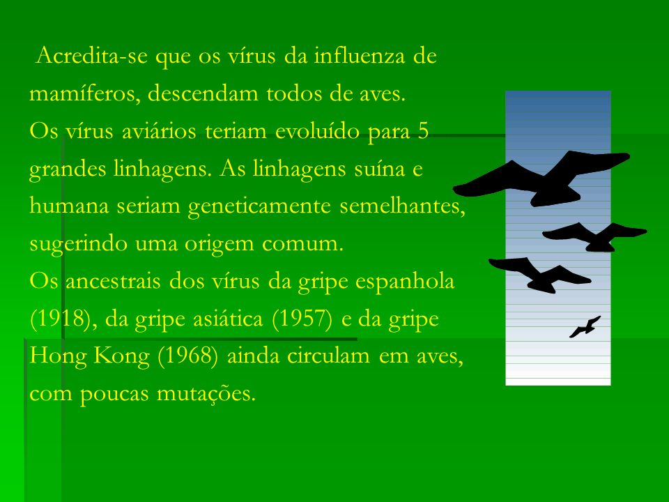 Acredita-se que os vírus da influenza de mamíferos, descendam todos de aves.