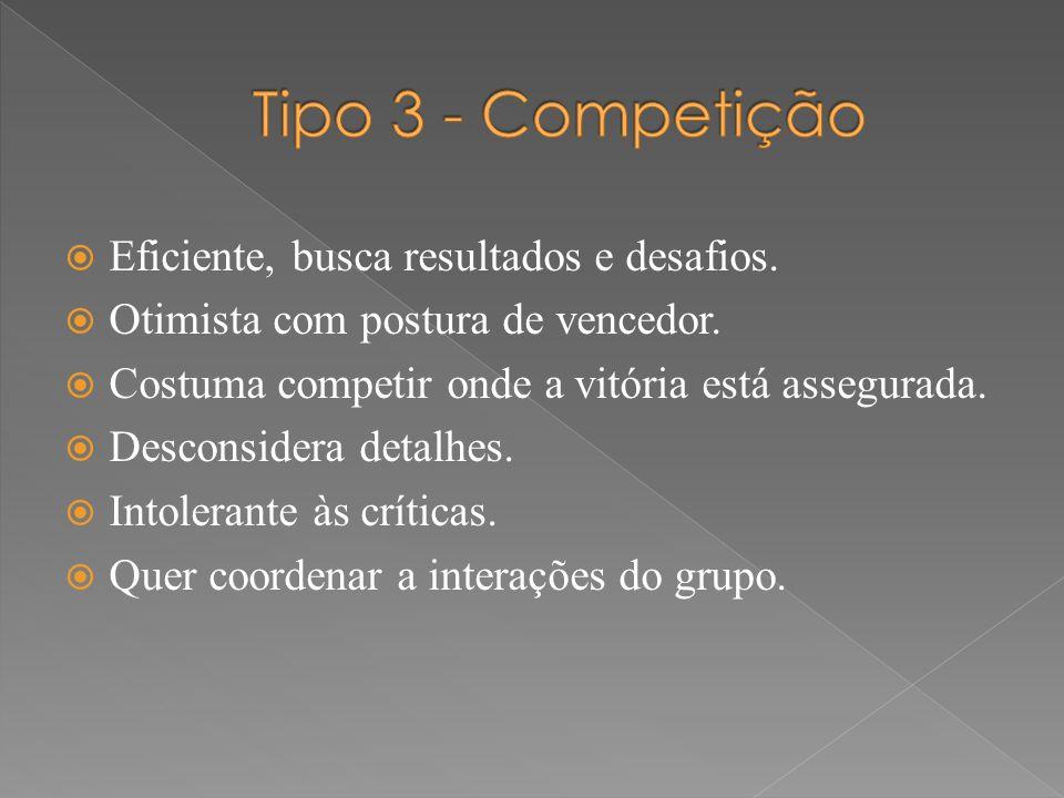 Tipo 3 - Competição Eficiente, busca resultados e desafios.