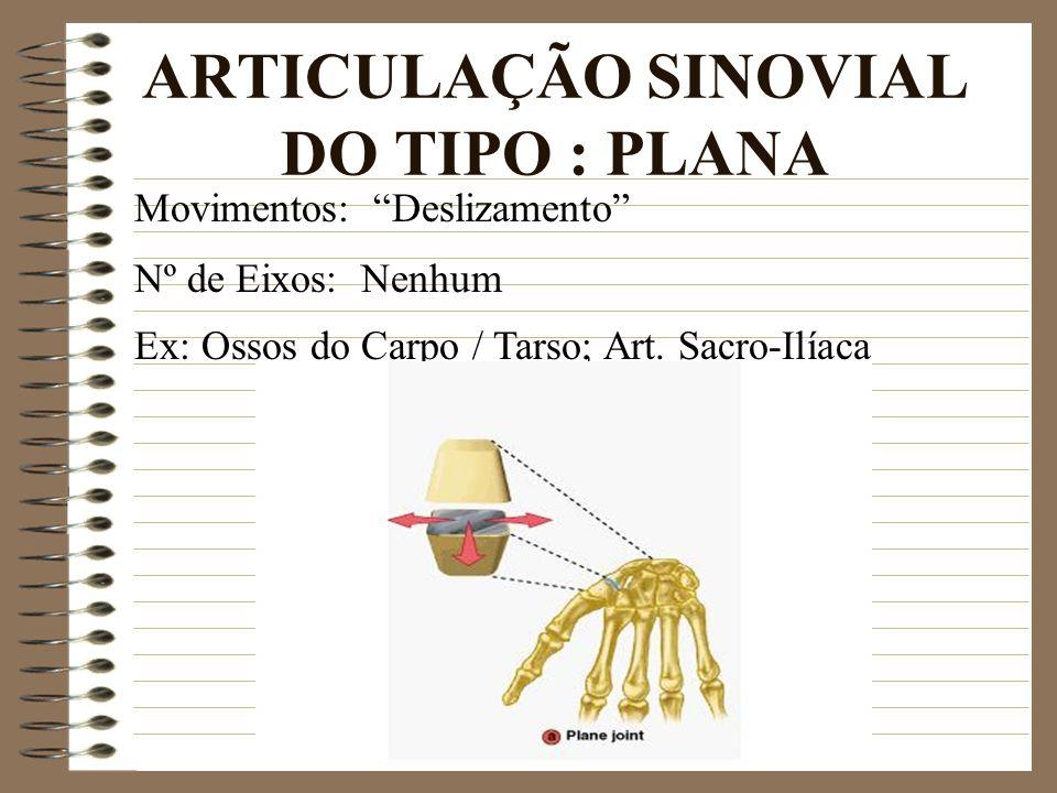 ARTICULAÇÃO SINOVIAL DO TIPO : PLANA