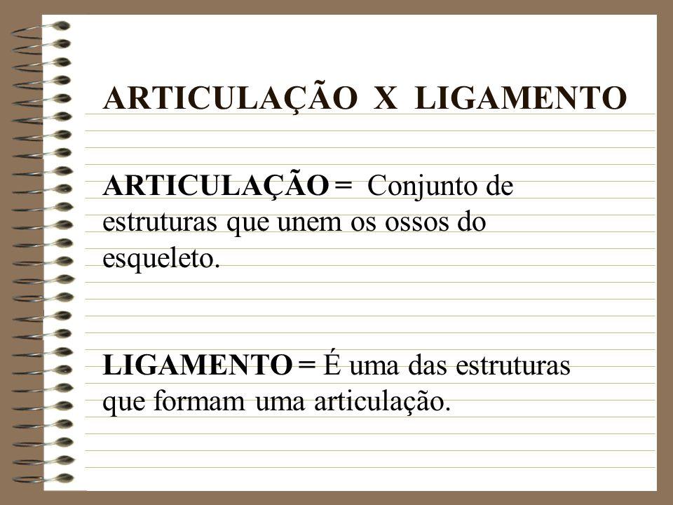 ARTICULAÇÃO X LIGAMENTO