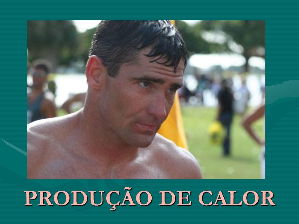 PRODUÇÃO DE CALOR