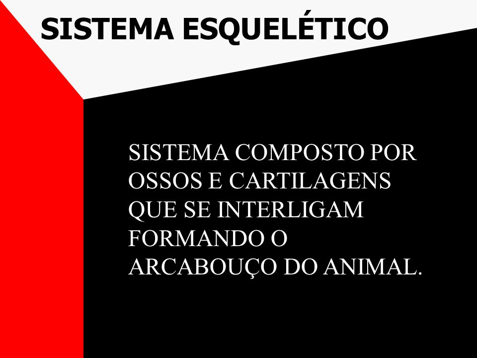 SISTEMA ESQUELÉTICO SISTEMA COMPOSTO POR OSSOS E CARTILAGENS QUE SE INTERLIGAM FORMANDO O ARCABOUÇO DO ANIMAL.