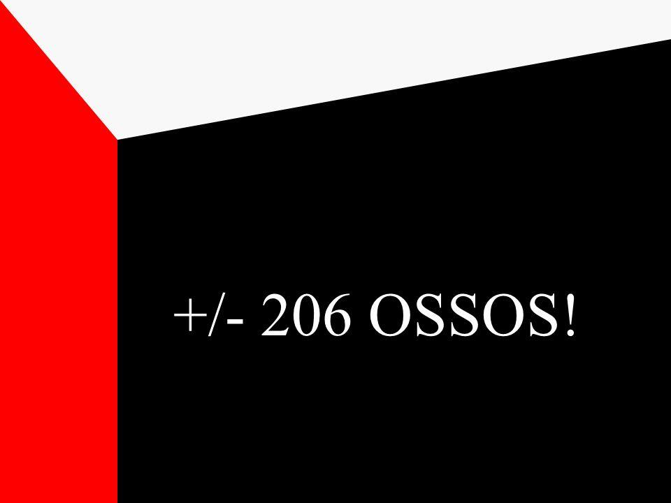 +/- 206 OSSOS!