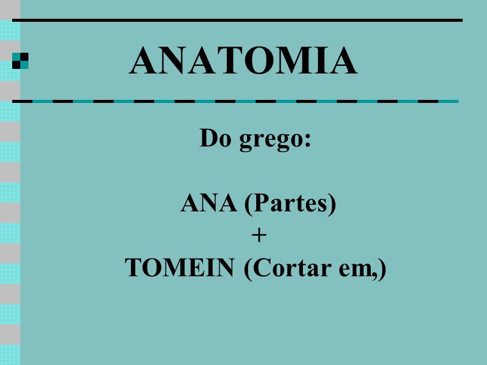 ANATOMIA Do grego: ANA (Partes) + TOMEIN (Cortar em,)