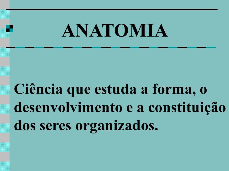 ANATOMIA Ciência que estuda a forma, o desenvolvimento e a constituição dos seres organizados.