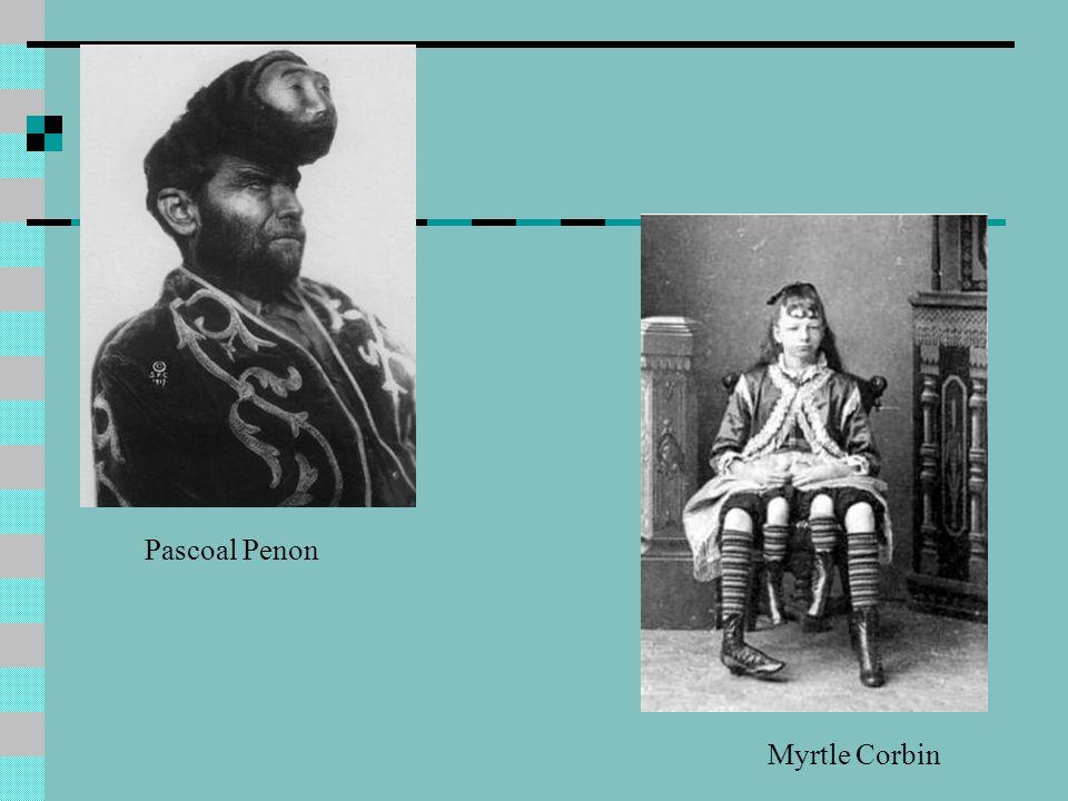 Pascoal Penon Myrtle Corbin