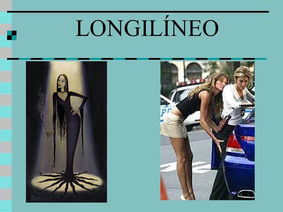 LONGILÍNEO