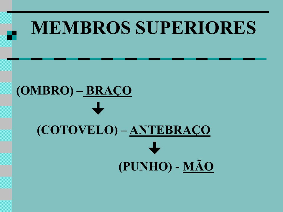 MEMBROS SUPERIORES (OMBRO) – BRAÇO (COTOVELO) – ANTEBRAÇO 